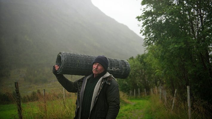 Miljøbilde kampanjeside Norsk lam i verdensklasse 3