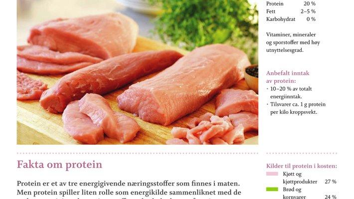 Faktaark protein