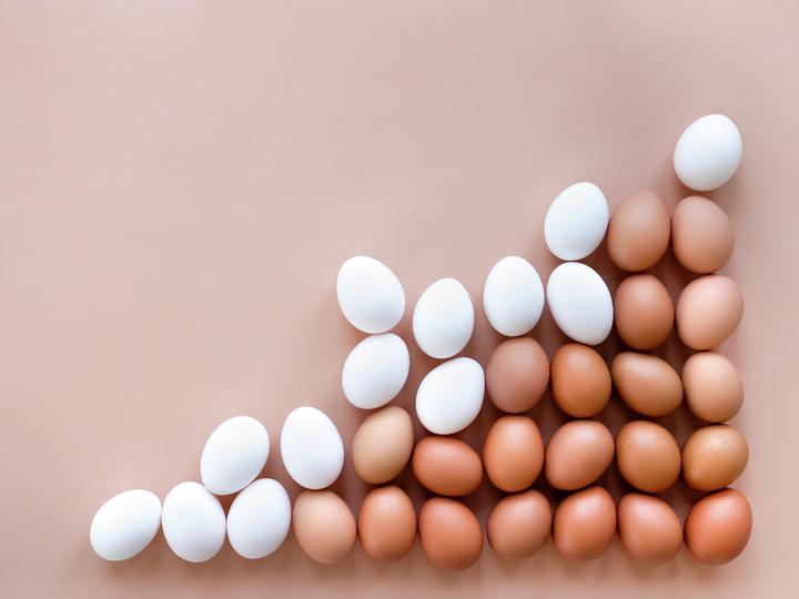 Er det forskjell på ulike typer egg?