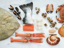 Fisk og skalldyr