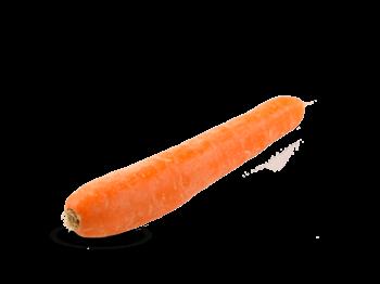 gulrot