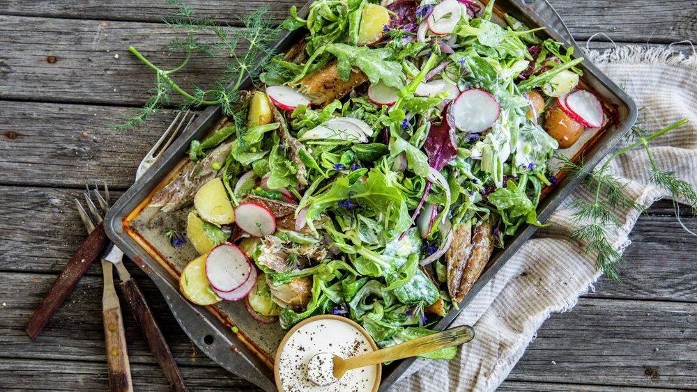 Varm salat med røkt makrell og poteter