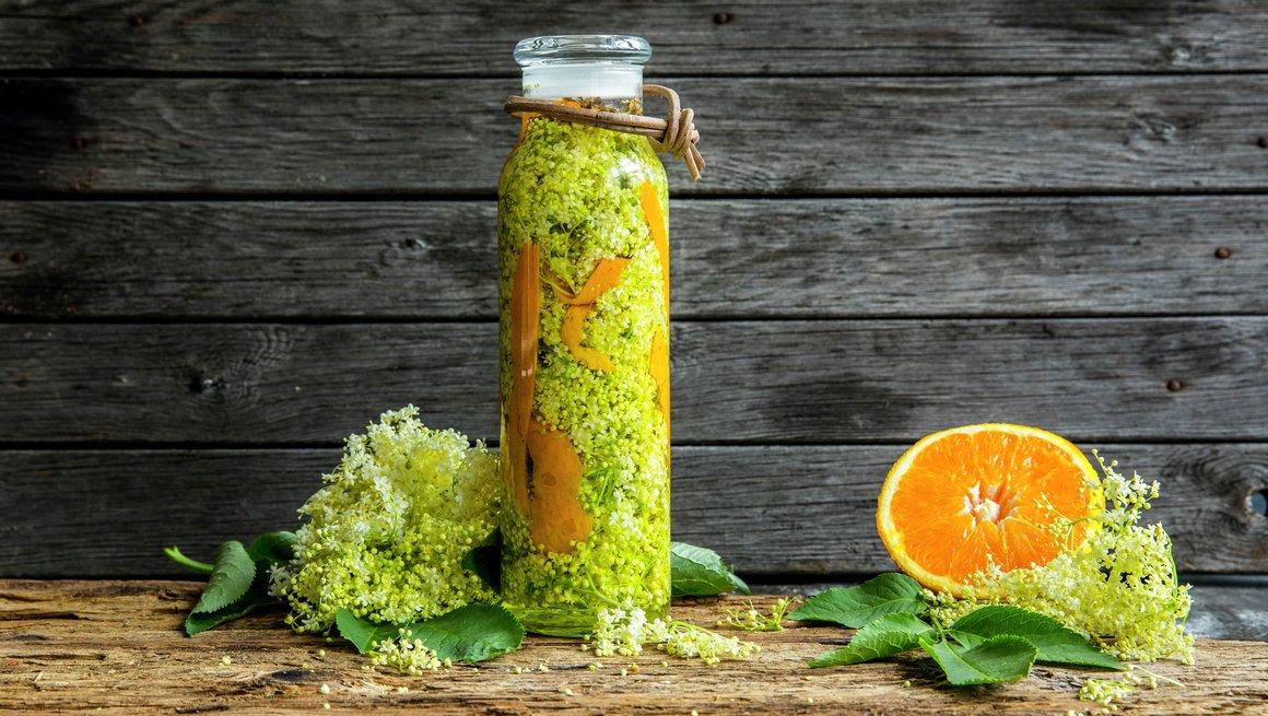 Hylleblomst- og appelsindram