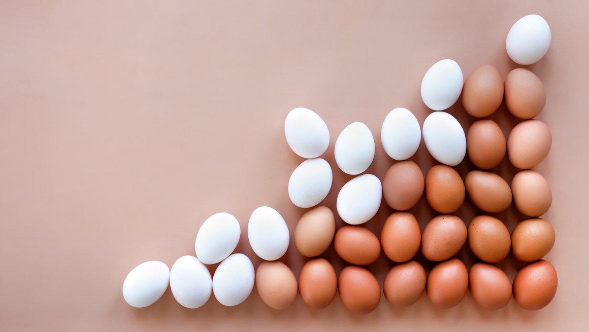 Brune og hvite egg