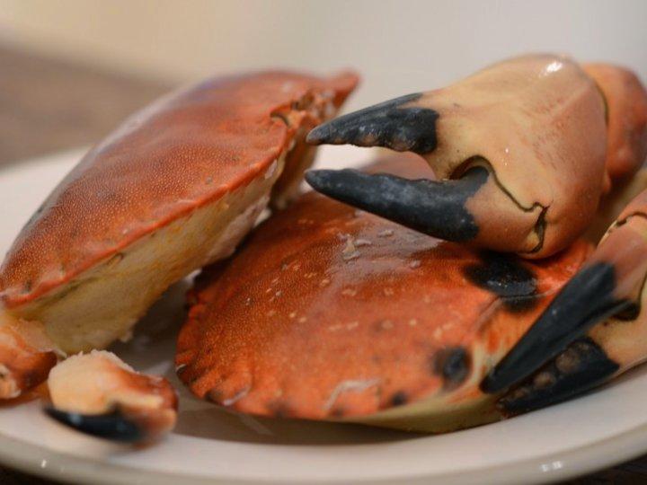 Krabbe, meny