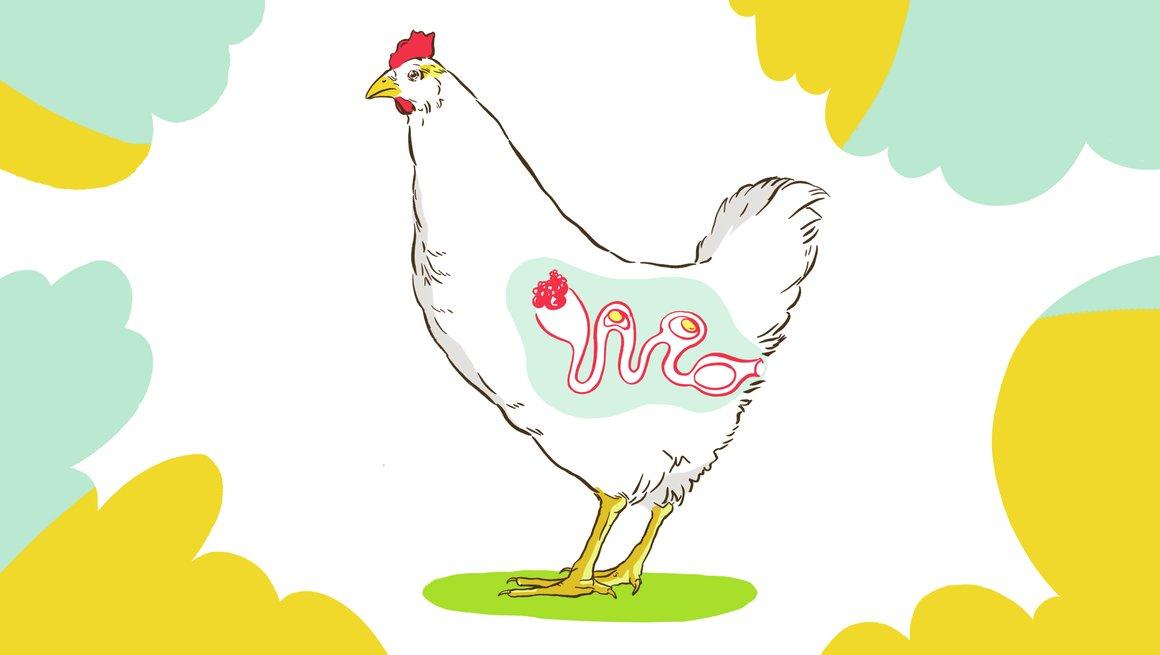Illustrasjon høne
