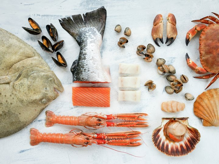 Behandling og oppbevaring av fisk og skalldyr