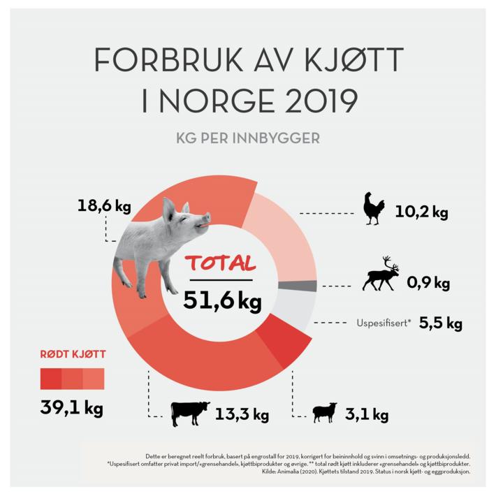 Infografikk forbruk kjøtt 2019