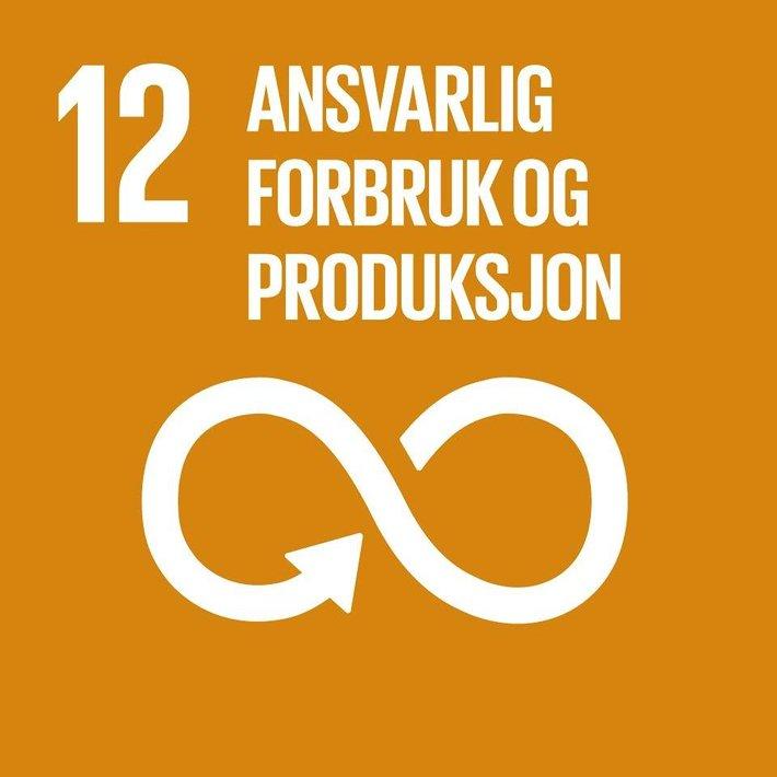 FNs bærekraftsmål 12.3