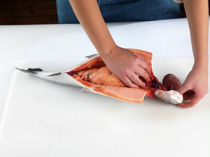 Slik renser og fileterer du fisk 8